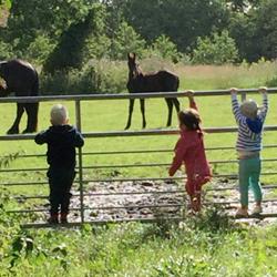 De-Boskabouter-marum_kinderen-buiten-paarden