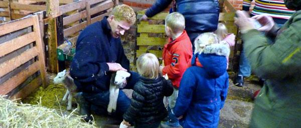 Lammetjes kijken Gastouder opvang boerderij