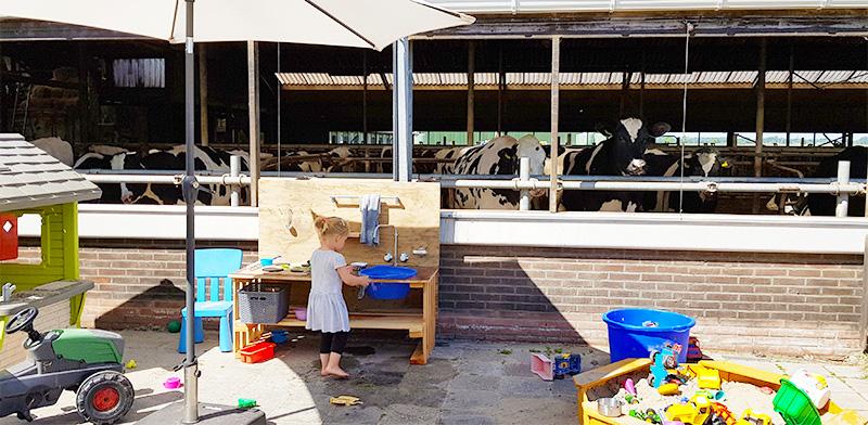 Buiten spelen koeien kinderopvang Dotje Den Horn
