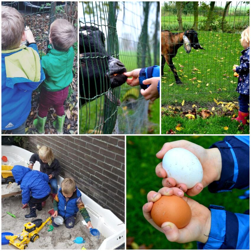 Gastouder Aduard kleuters buiten spelen geit eieren zandbak