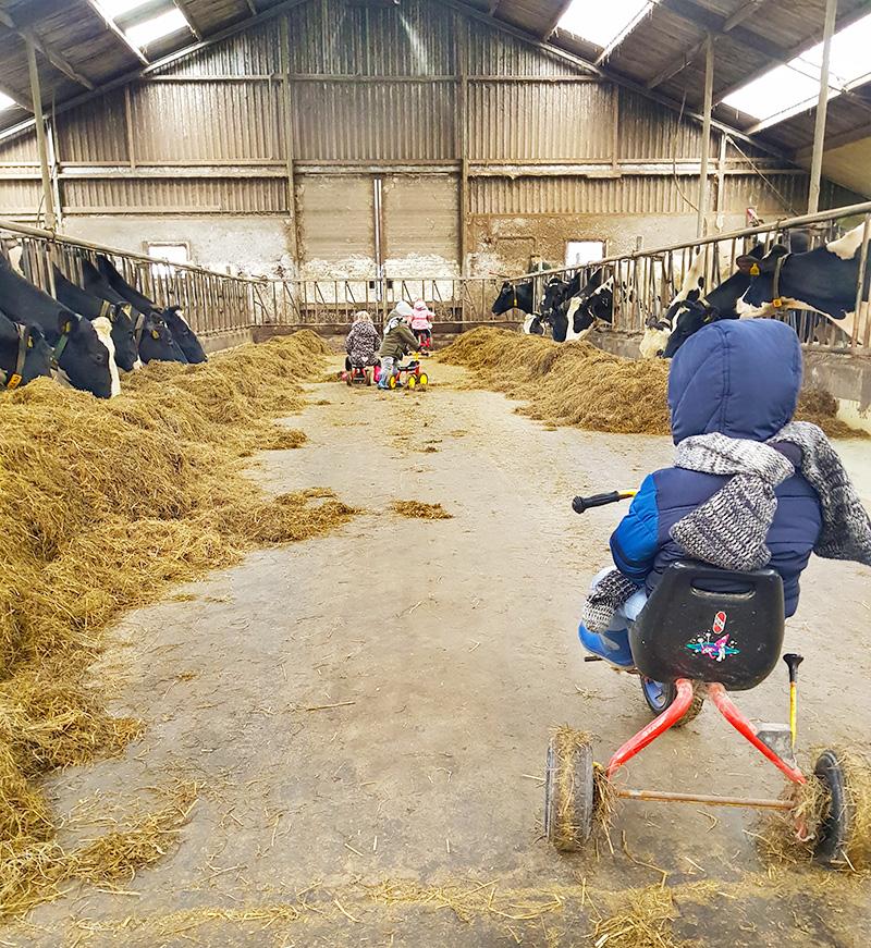 Kinderen spelen koeienstal kinderopvang Westerkwartier